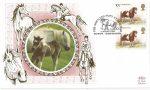 1994_the-shetland-pony-at-braemar-braemar-aberdeenshire_9311